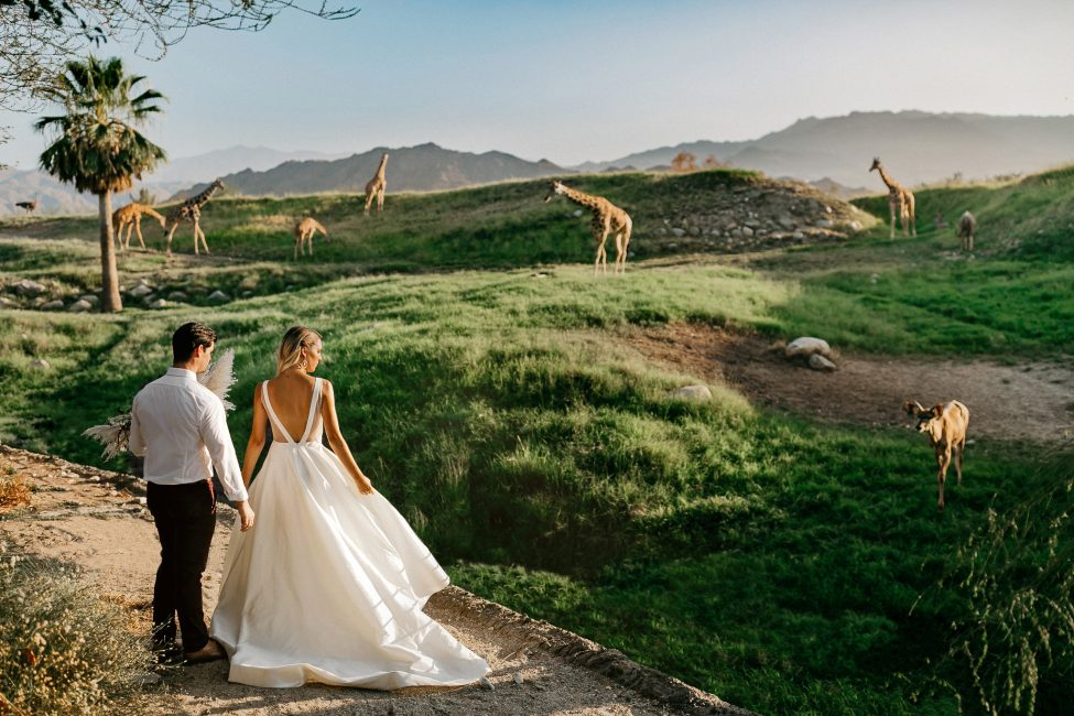 Living Desert Zoo Weddings